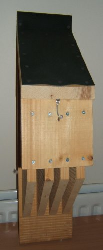 bat box with vertical baffles